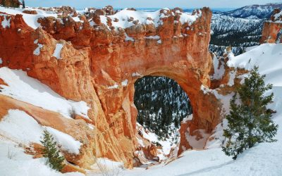 Booking Express Travel Members Explore Bryce Canyon