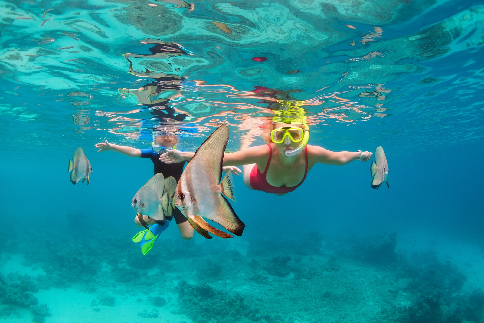 snorkeling with Booking Express Travel